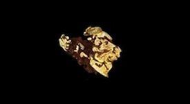 Gold nugget leaf
