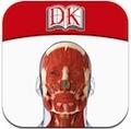 DK The Human Body