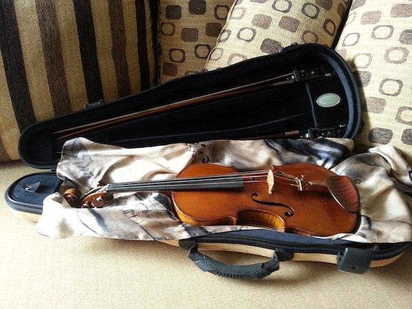 Jakob Winter Spruce violin case