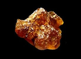 Copal Colombia South America