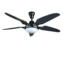 Install a Ceiling Fan with Light